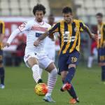 Carpi-Hellas Verona 0-0, voti e tabellino: un pareggio che non serve a nessuno