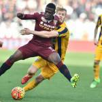 Torino-Hellas Verona 0-0, voti e tabellino: regna la noia